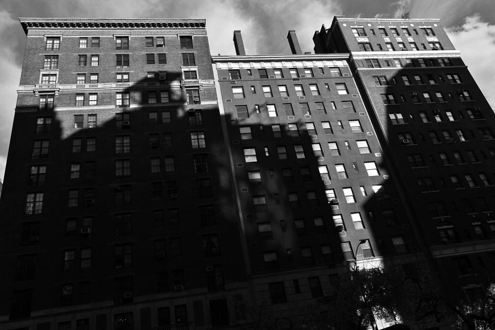 http://omenelick2ato.com/files/gimgs/268_newyork-p-e-b-12-pe3.jpg